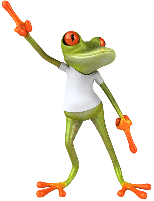 Confident dancing frog showing he is different form other web design and marketing agencies