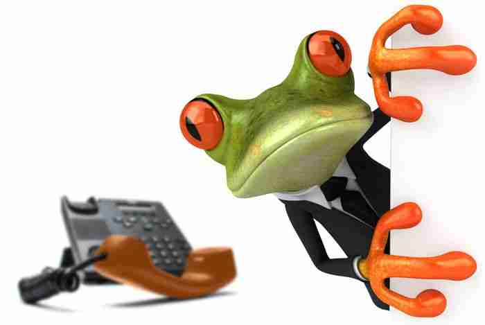 Frog and telephone Blackstone Moss Melbourne Web design and marketing